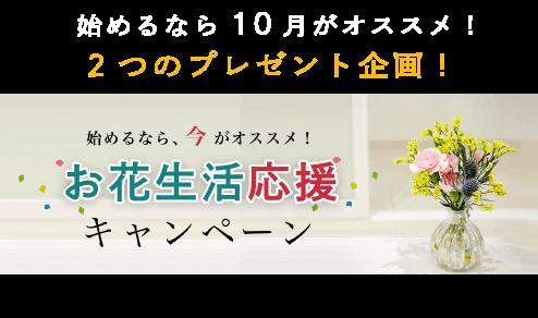 お花生活応援キャンペーン